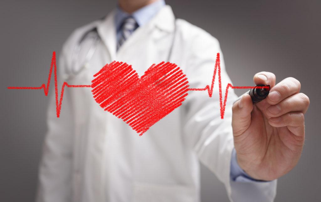 cardiovascular-health-1024x645